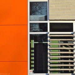 Urban Abstract No 22 (llawsonellis) Tags: outside building architecture modernarchitecture siding windows shutters wooden reflections patterns pattern crop fragment abstractcrop abstract abstraction urban urbanabstract mundane orange green black white beige bricks brickwall section shadows shadowpatterns rhythm line lines linear texture textures rectangles rectilinear square squareformat nikon nikond5300 text