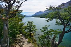 Laguna del Desierto (Mauro JR Silva) Tags: laguna glaciar huemul chalten argentina patagonia