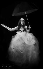 Alexe-2 (leeannetrudel) Tags: blackandwhite umbrella studio noiretblanc parapluie