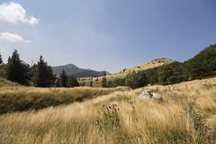 The Golden Fields Of My Dreams (Igor Letilovic) Tags: mountains nature canon landscape croatia hills priroda hrvatska brda polja 600d velebit zavizan planine pejzaz zlatna snova mojih
