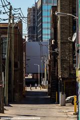 Hall's Lane (Matt M S) Tags: city cambridge urban ontario downtown king metro kitchener waterloo region metropolitan core southwestern tricities downtownkitchener waterlooregion dtklove
