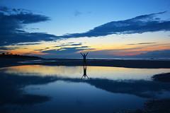 Daybreak (KrisVlad) Tags: morning travel portrait reflection beach water colors self sunrise island dawn head hilton vivid kris vlad krisvlad