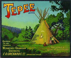 "Tepee • <a style=""font-size:0.8em;"" href=""http://www.flickr.com/photos/136320455@N08/20849030804/"" target=""_blank"">View on Flickr</a>"