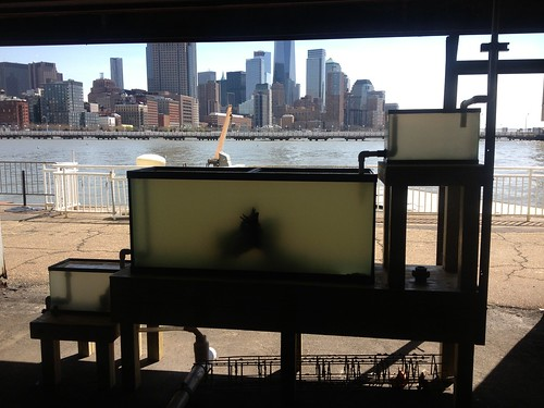 Specialty Holding Systems - River Project - NYC - 1