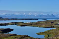 VESTFIRÐIR - Skarðsströnd landscape (Andrea Zille) Tags: iceland islanda republicoficeland lýðveldiðísland islandazilleandrea