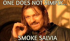 Salvia meme (dylan.unknown5150) Tags: one smoke smoking meme drugs salvia does simply paranoia freakout tripping hallucinations