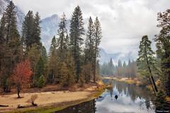 Autumn in Yosemite (rsusanto) Tags: yosemite yosemitenationalpark yosemitevalley sentinelbeach