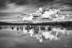 (Rkitichai) Tags: longexposure blackandwhite cloud reflection nature monochrome river landscape thailand mekhong ubonratchatani khongjiam thaitravel