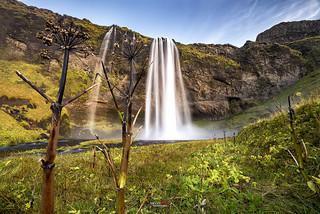 Selfjalandfoss Waterfall