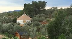 Yurta mongola 3