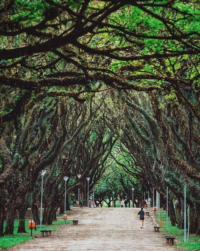 Parque Marinha do Brasil