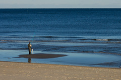 The Fisherman (JMFusco) Tags: newjersey jerseyshore springlake