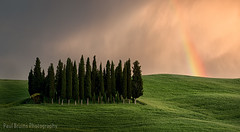 Tuscan Rainbow Sunset (Panorama Paul) Tags: trees sunset italy rainbow tuscany cypress valdorcia nikkorlenses nikfilters nikond800 wwwpaulbruinscoza paulbruinsphotography