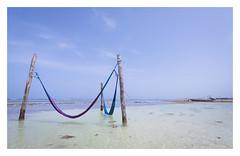 Hamacas (Chilo_Prez) Tags: azul mar rivieramaya 1022mm mahahual hamacas canon50d
