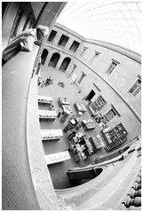 Perspectivas (R-MeGa) Tags: mxico arquitectura retrato fisheye mx canoneos fci ojodepez deformacin 70d fotoclubingenieros perpestiva samyang8mmf35 canoneos70d canon70d fotoclubing