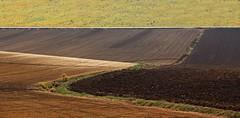 Senza titolo (Escursionista53) Tags: campagnamarchigiana paesaggiomarchigiano terramarchigiana paesaggiodellemarche marche terradellemarche strada