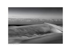 Dunes (Lucie van Dongen) Tags: dunes blackandwhite landscape paisaje maspalomas paysage sable sand outdoor lines curves zen tranquility scene tranquilscene canaryisland grancanaria