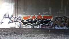 20160923_153741 (Thatblindbat) Tags: ct ctgraff ctgraffiti connecticut graffiti graff art streetart scoe scoe5 ims imscrew freights craze hicrew ra
