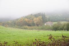 Niebla en Meaka (Irun) (eitb.eus) Tags: eitbcom 22107 g1 tiemponaturaleza tiempon2016 fenomenosatmosfericos gipuzkoa irun ggg
