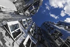wellig (tan.ja1212) Tags: gehrybauten fassade gebäude himmel fenster spiegel spiegelung silber wolken düsseldorf medienhafen