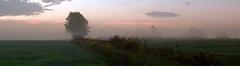 Foggy sunrise (virgil martin) Tags: panorama landscape mist fog morningmist wellingtoncounty ontario canada olympusomdem5 oloneo microsoftice gimp