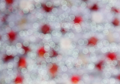 Christmas background with bokeh lights (phuong.sg@gmail.com) Tags: abstract background beautiful beauty blink blurred bokeh bright celebration christmas color decoration defocused gift gleam glitter glowing green grey holiday image light luminosity ornament pattern pink season shine shiny sky snow snowfall snowflakes snowstorm space sparkle texture textured winter xmas