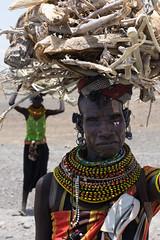 Gathering firewood (JohnMawer) Tags: woman firewood kenya laketurkana africa marsabitcounty ke turkana