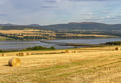 Cromarty Bridge (Kev Gregory (General)) Tags: cromarty bridge a9 near duncanston north inverness scotland kev gregory canon 7d scottish highlands