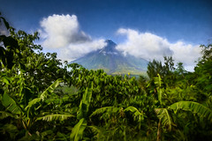 Mayon Volcano Painterly (FotoGrazio) Tags: freetodownload composition nature photographersinsandiego fotograzio digitalphotography photoeffect worldphotographer phototopainting waynegrazio photography photographicart photographersincalifornia mayonvolcano photomanipulation freeimage fineart landscape waynesgrazio texture downloadforfree photoshoot phototoart art albay legazpi philippines explore clouds sandiegophotographer freepicture painterly internationalphotographers volcano beautiful bicol farmland artofphotography 500px californiaphotographer flickr capture greenandblue scenic mountain