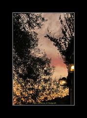 """OCASO EN OTOO (CODIGO DE LUZ """"El Fotgrafo"""") Tags: otoo ocres naranjas amarillos atardecer ocaso arboles belleza nubes cielosrojizos"""