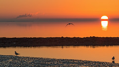 Sonnenuntergang (oliver_hb) Tags: norddeich ostsee nordsee sonnenuntergang meer