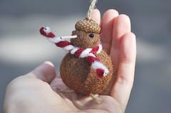 Needle felted kiwi bird ornament (noristudio3o) Tags: kiwi bird ornament holiday christmas figurine miniature gift handmade needle felting felted felt brown scarf acorn beret cap kawaii cute noristudio nori studio
