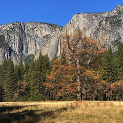 Great day in Yosemite! (Jeffrey Sullivan) Tags: instagramapp square squareformat iphoneography uploaded:by=instagram