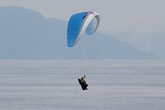 decollato dall' Alta Via dei Monti Liguri con direzione mare e atterraggio sulla spiaggia (Carla@) Tags: parapendio liguria italia europa mfcc canon supershot parapente paraglider