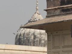 DSCN5128.JPG (Drew and Julie McPheeters) Tags: india delhi redfort