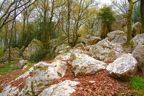 rochers de puy- rome