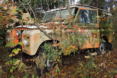 The Place Beyond the Pines, Belgium, Nov 2016 (roger.w800) Tags: scrapyard junkyard junk army military scrap surplus retired abandoned rust rusty rusting wreck truck lorry van mercedes vw volkswagen magirus mantruck tatra hanomag trabant militarytrabant exarmy exmilitary abandonment decay belgium belgian nato coldwarera vehicles car motorbike