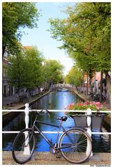 Delft (Simone Seymons (swamipics)) Tags: delft canal canali channel olanda holland grachten