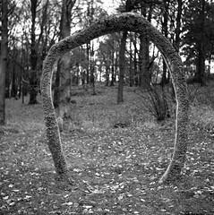 for the scouts (rotabaga) Tags: sverige sweden svartvitt göteborg gothenburg blackandwhite bw bwfp film mediumformat mellanformat 120 6x6 tmax400 r09 lomo lomography lubitel166 twinlens analog slottsskogen