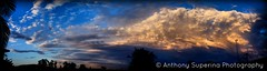 Final Sunset of Spring 2016 (Anthony S.) Tags: anthonys anthonysuperina seasonal spring sunset sky skies skyscape skyline contrastingskies clouds cloudscape cloudscapes stormcell thunderhead thunderstorm southernhemisphere australiathunderstorms canon eos canoneos hues landscape panorama panoramic photoborder outdoors nature therebeastormabrewin weather australia outdoor cloud suburban