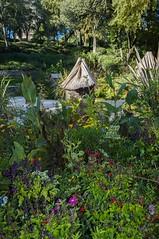 NIMES-0135 (13) (philippemurtas) Tags: nîmes detail ville france gard tawn verdure jardin couleur fleur nenupar eau greenery garden color flower water