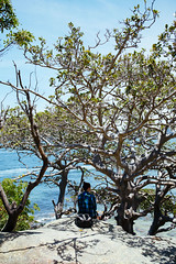 aPpLeRoCk (FrederickMcdonald) Tags: harbour water colour outdoors travel australia wild walk bush canon