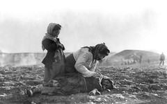#Armenian Woman Kneeling Beside Dead Child. Aleppo circa 1915-1919 [2479x1551] [NSFW] #history #retro #vintage #dh #HistoryPorn http://ift.tt/2gnmDeA (Histolines) Tags: histolines history timeline retro vinatage armenian woman kneeling beside dead child aleppo circa 19151919 2479x1551 nsfw vintage dh historyporn httpifttt2gnmdea