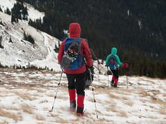 Descending from Mist Ridge (David R. Crowe) Tags: landscape mountain mountainscrambling nature outdooractivities scrambling turnervalley alberta canada
