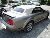 Ford Mustang V Verdeck