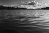 Light waves (C h i r a g) Tags: light bw lake art nature monochrome beautiful mono moody photooftheday rickmansworth aquadrome