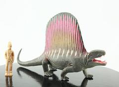 Dimetrodon (RobinGoodfellow_(m)) Tags: favorite dimetrodon