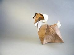 Goat - Nguyen Hung Cuong (Rui.Roda) Tags: origami goat bode cabra papiroflexia hung nguyen cuong chèvre papierfalten