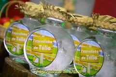 FAZENDINHA DO TULIO 2015 FINAL-29 (agencia2erres) Tags: aniversario 1 infantil festa ano fazenda fazendinha