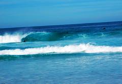 DSCN0107 copy (vanessadoulames) Tags: ocean california beach monterey surf waves norcal asilomar